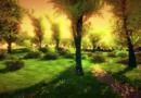 guardián ecológico